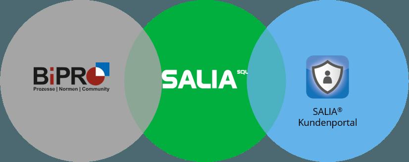 Das moderne Zusammenspiel zwischen SALIA®– BiPRO – Kundenportal